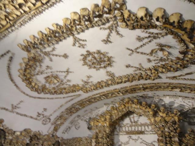 кости капуцинов