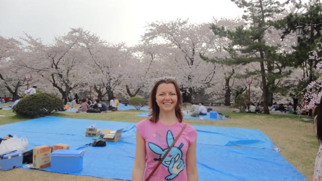 фестиваль сакуры