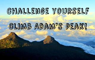 Challenge yourself Climb Adams Peak